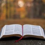 Open Bible on a Rock